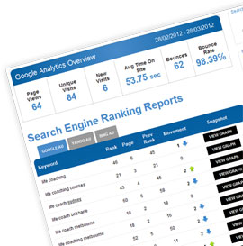 search engine reporting